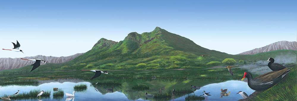 Hawaii Landscape Painting Kaelepulu Wetland