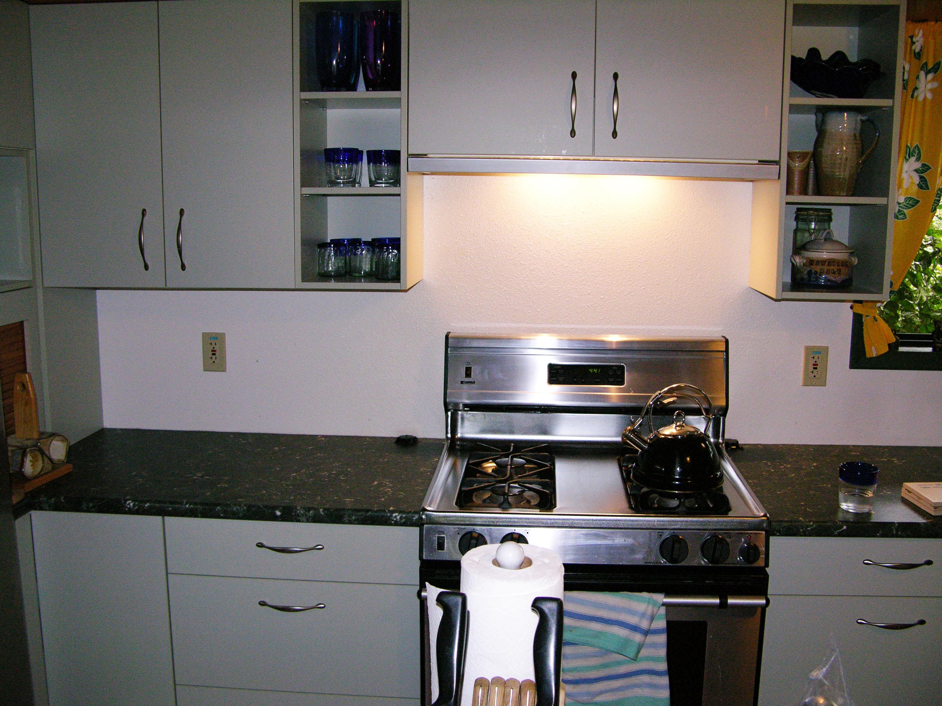 Kitchen Backsplash Before Palm Fronds Tile-Mural