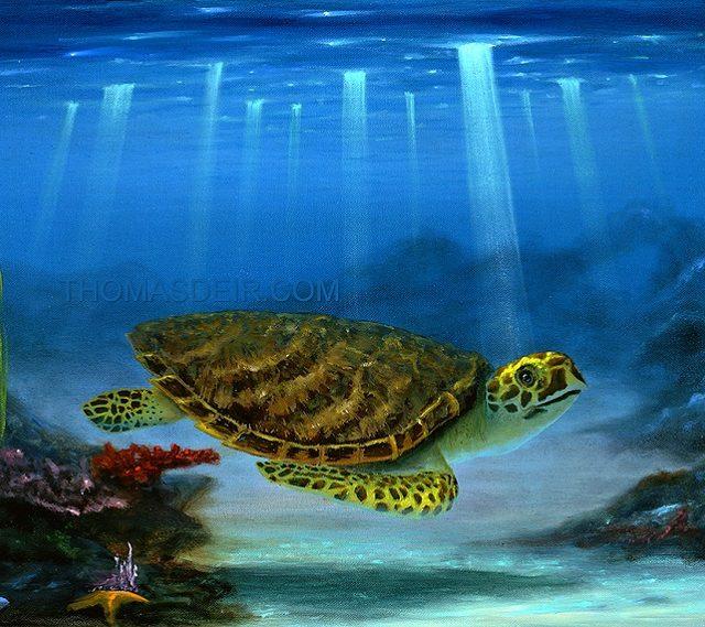 Hawaii sea turtles painting Myrtle the Turtle