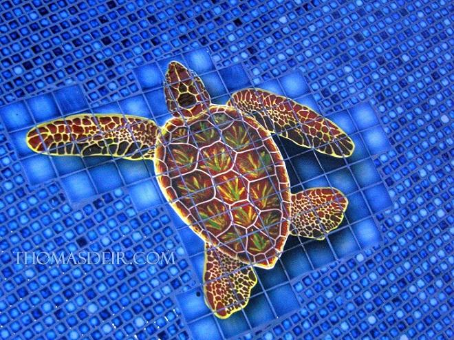 pool turtle tile mural